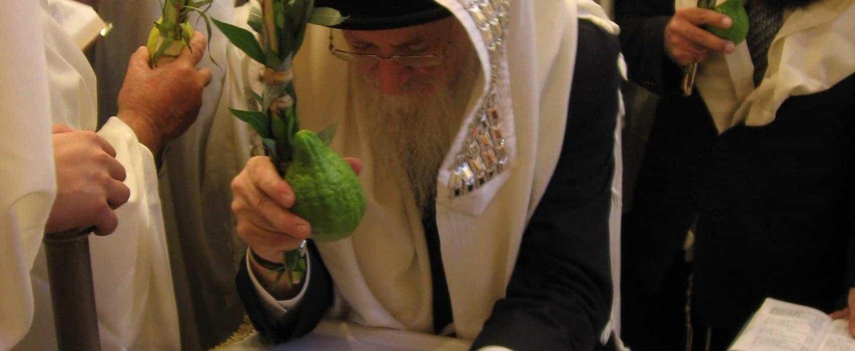the light of rabbi mordechai eliyahu