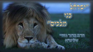 rabbi baruch gazahay 14