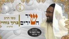 rabbi baruch gazahay