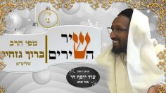 rabbi baruch gazahay hd 1