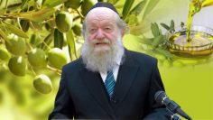 למה נמשלו ישראל לשמן זית? – הרב יוסף בן פורת HD