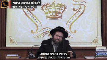 תשובה אחת לכל השאלות! | הרב יואל ראטה שליט