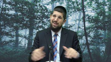 הרב אליהו עמר נפש החיים שיעור נג