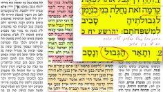 הדף היומי מסכת בכורות דף נ״ה 55 Daf yomi Bechoros daf 55