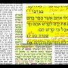 הדף היומי מסכת ערכין דף ד Daf yomi Arachin daf 4
