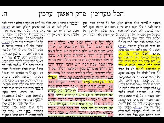 הדף היומי מסכת ערכין דף ה Daf yomi Arahin daf 5