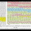 הדף היומי מסכת בכורות דף סא Daf yomi Bechoros Daf 61