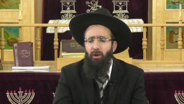 פרשת השבוע - תרומה - האם יהודי יכול לתרום לבורא עולם? הרב אלמוג לוי