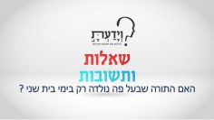 פרטי: [ID: kNu6WEkYsjg] Youtube Automatic